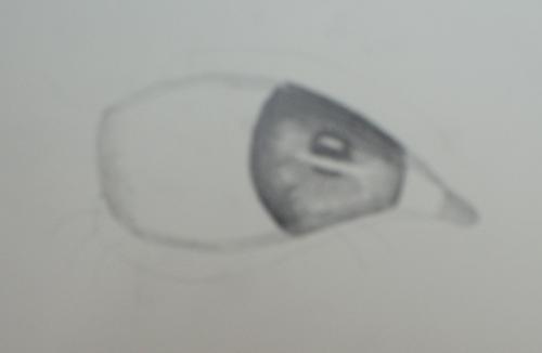 el trazado del ojo con lápiz