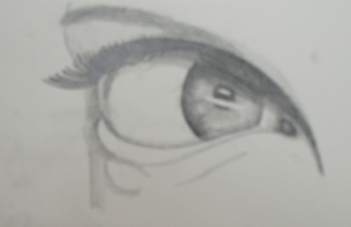 dibujando un ojo realista