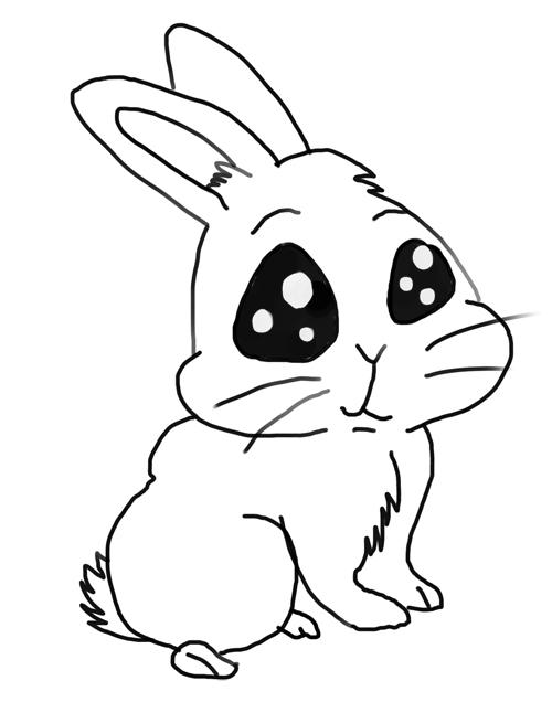 Dibujo De Conejo Como Dibujar Un Conejo Animales Para Dibujar