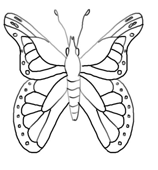 mis mariposas de dibujo