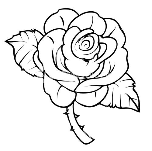 Cómo Dibujar Una Rosa Rosas Para Dibujar A Lápiz