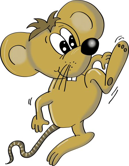 raton pintado