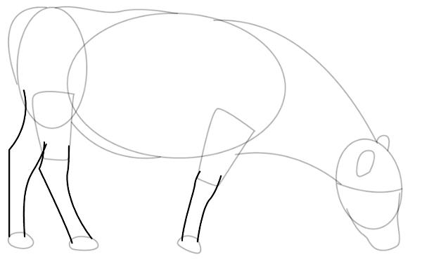 dibujos sencillos de aprender