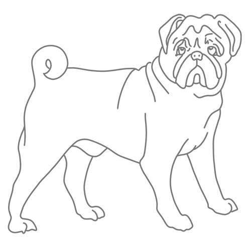 aprender-a-dibujar-y-pintar-perros