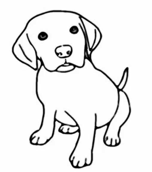 como-dibujar-un-perro-facil-1