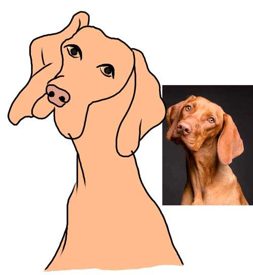 dibujo-digital-de-perro