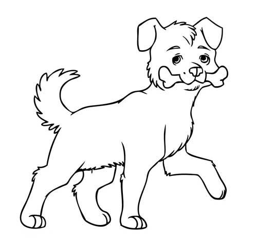 dibujo-huella-perro