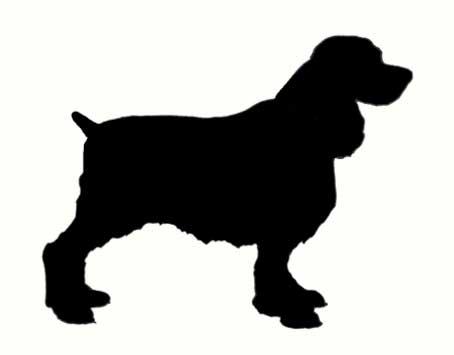 fotos-de-perros-para-dibujar