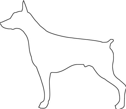pinta-tu-propio-perro