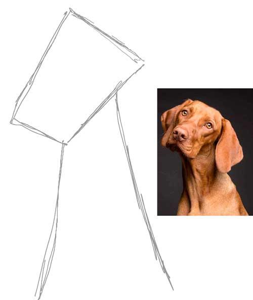 tutorial-de-dibujo