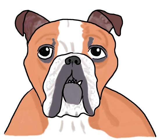 tutorial-para-dibujar-un-perro