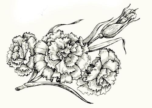 dibujos de flores y rosas