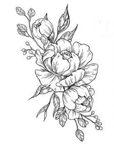 Extrana Flor De Dibujo Dibujos Faciles De Hacer