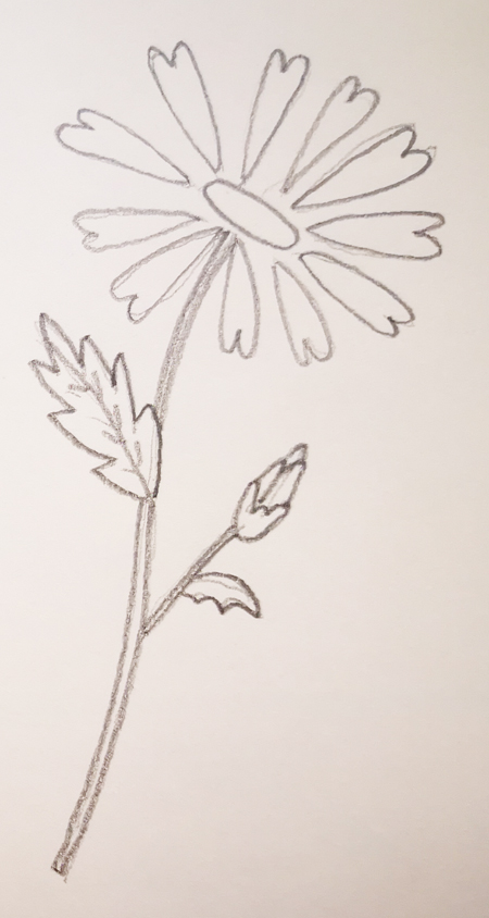 tus mejores flor dibujo