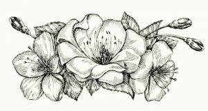 Dibujos De Flores Para Pintar En Tela Dibujos Faciles De Hacer