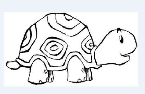 lindo dibujo de tortuga