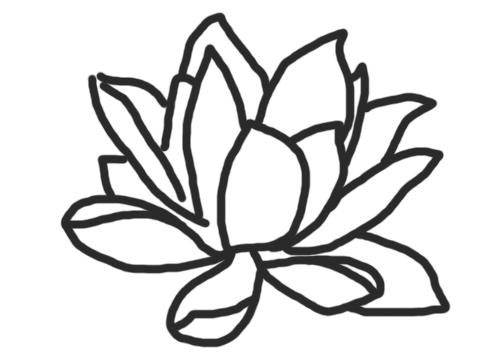 Imagenes De Flores Para Colorear Bonitas: Distintas Flores Para Dibujar Y Colorear