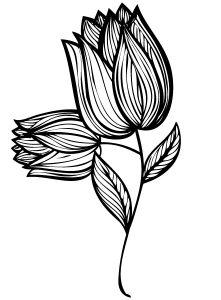 Flores Bonitas Para Dibujar Dibujos Faciles De Hacer