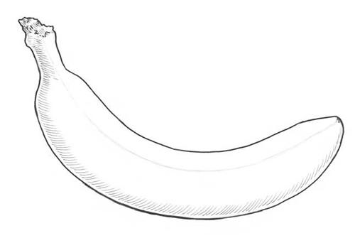 minions bananas dibujos