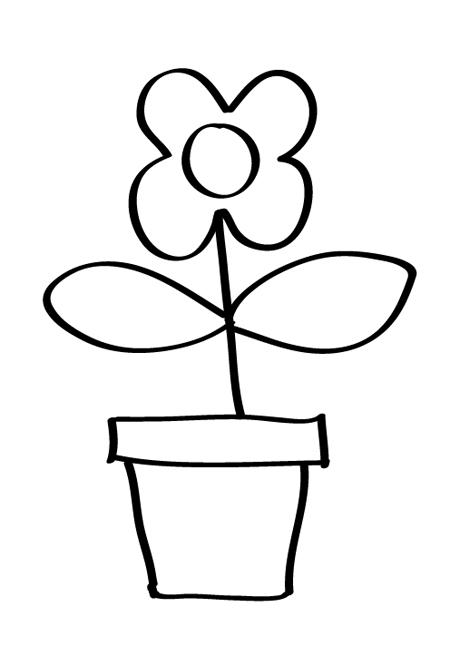 flor para bebe