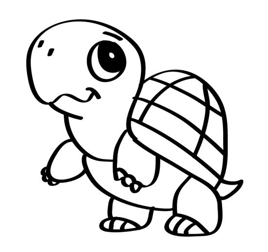 tortuga de dibujo bonito