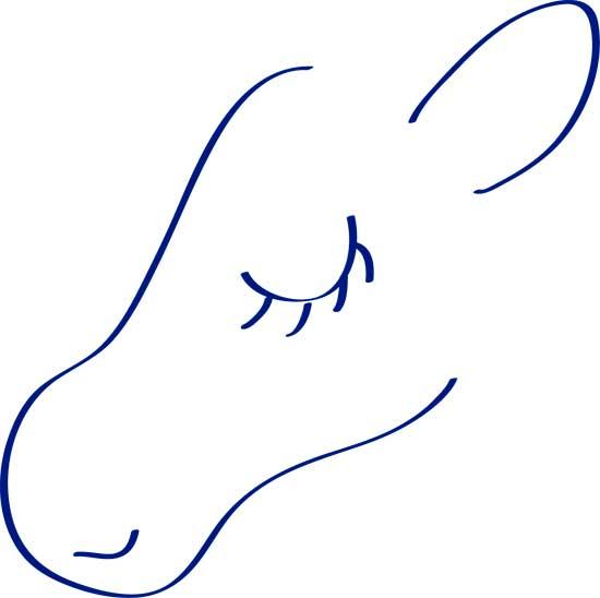 como dibujar un unicornio