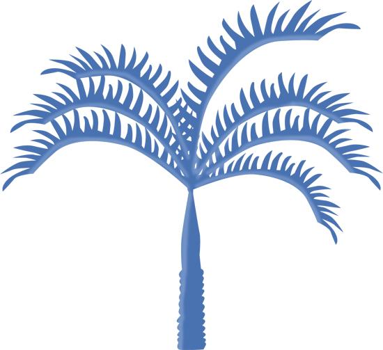 dibujo de palmera
