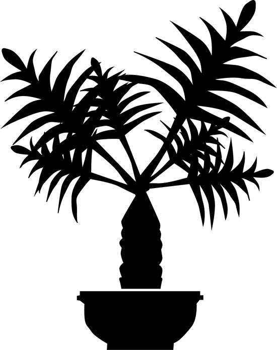 dibujos de hojas de palmeras