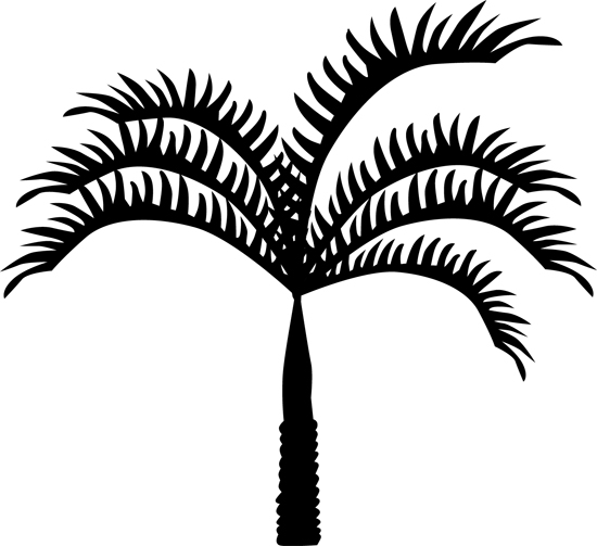 hojas de palmera dibujo