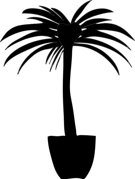 palmeras para colorear