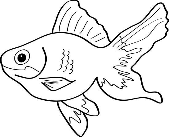 peces de colores de dibujo
