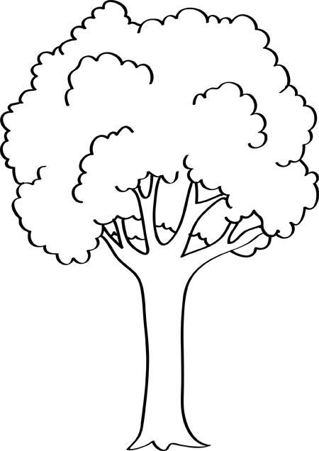 arboles para dibujar y pintar