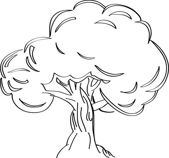 bocetos de arboles para dibujar