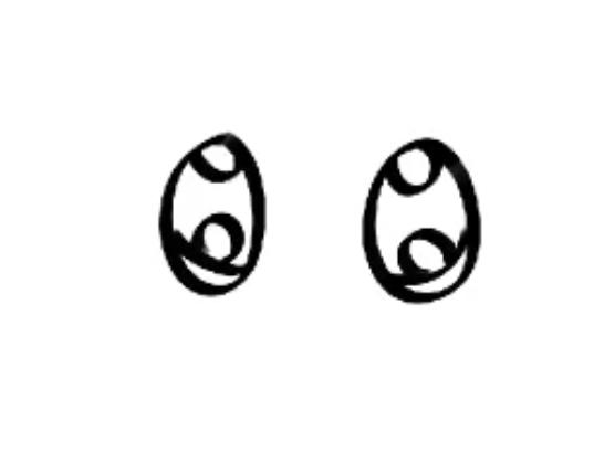 ojos terminados